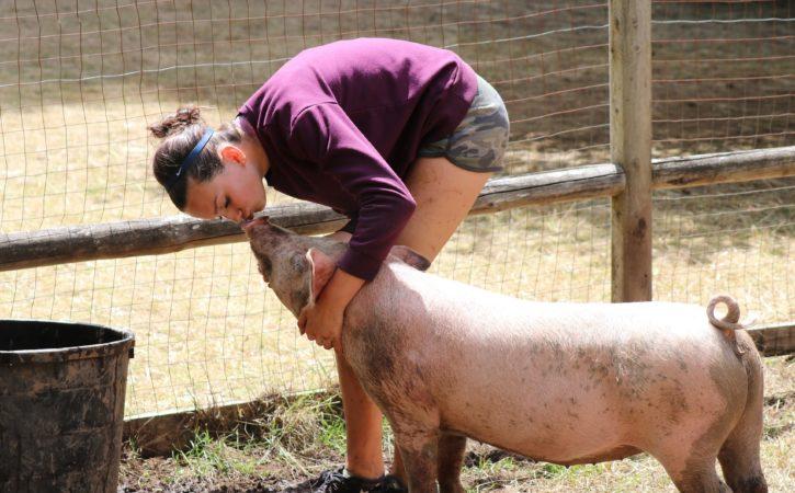 belle-femme-embrasse-cochon-houri