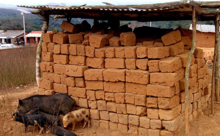 cochons-briques-terre-adobe
