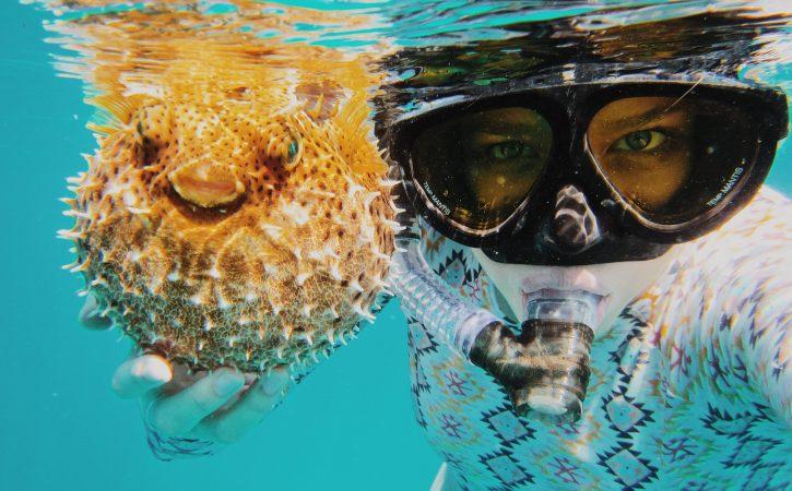 poisson-ballon-halllieutique